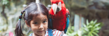 girl with a parrot on her shoulder