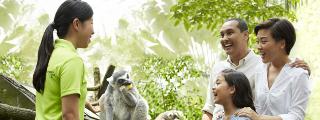 Family fun at the zoo